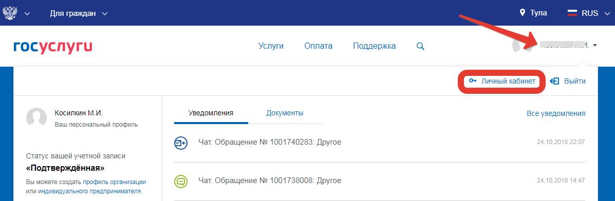 Возможности учетной записи портала государственных услуг.